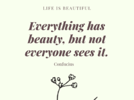 Everything-has-beauty-not-everyone-can-see-it